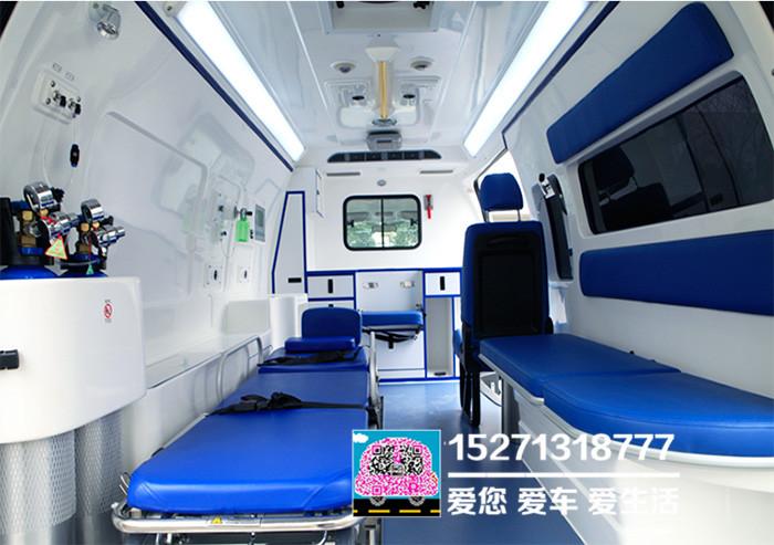 豐田海獅救護車圖片