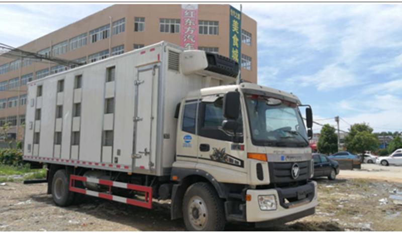 CLW5163XCQB5雏禽运输车