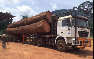 木料运输车出口|6X6全驱原木运输车|全驱森林木材运输车图片