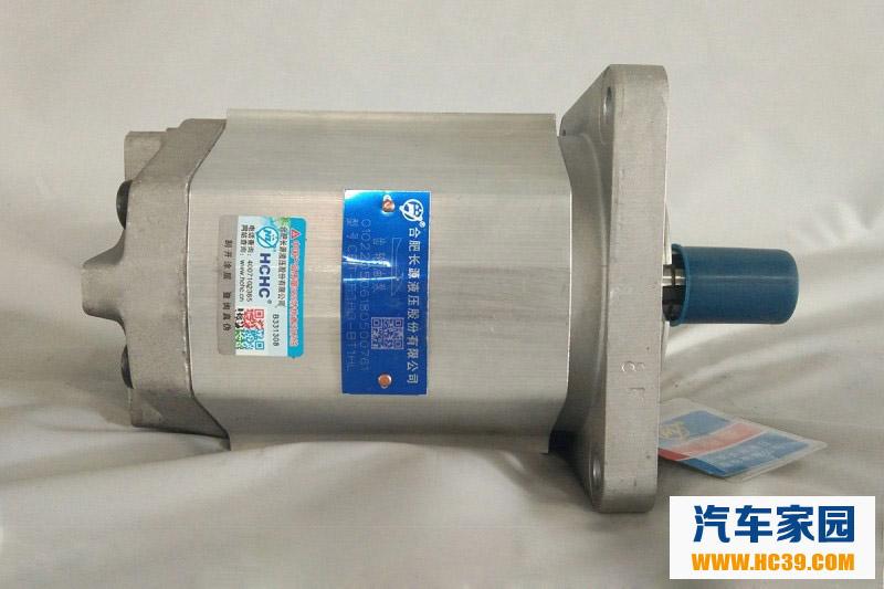 齿轮油泵图片