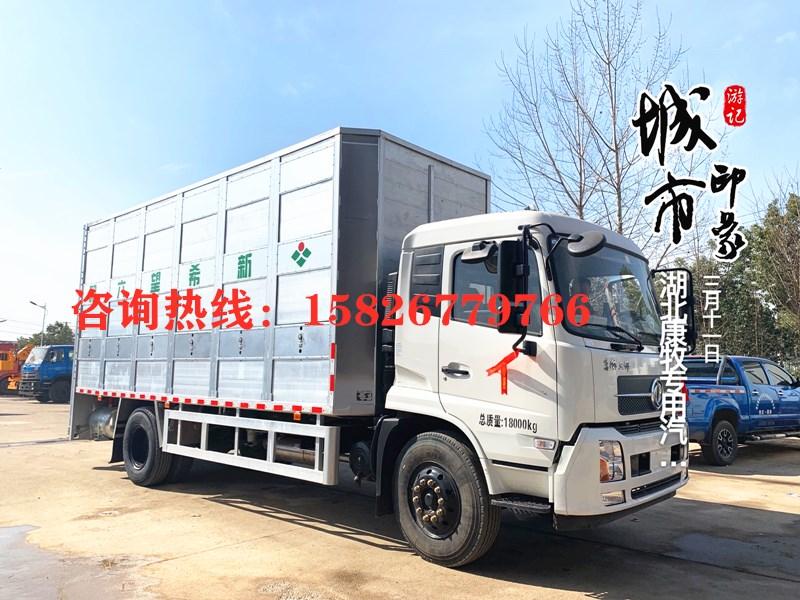 6米4猪苗运输车 畜禽运输车
