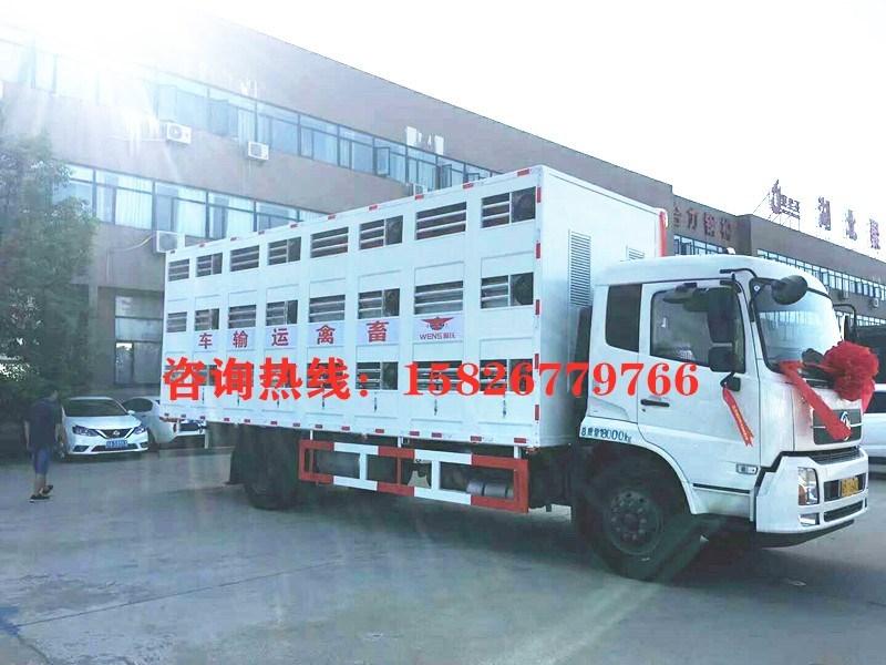 7米4猪苗运输车   康牧运猪车