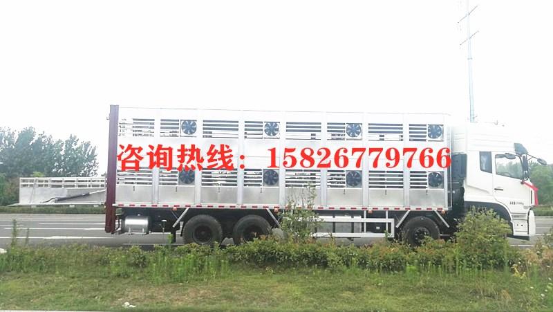 9米4猪苗运输车  康牧畜禽运输车_高清图片