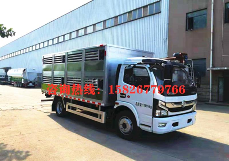 国六5米猪苗运输车