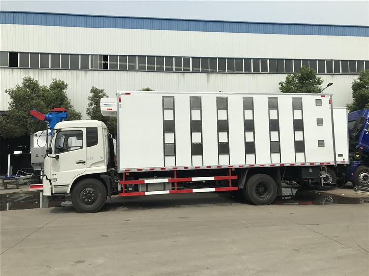 东风天龙9米6拉猪车第二段视频