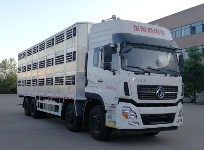 东风天龙前四后八畜禽运输车厂家 视频视频