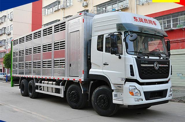 爆款东风天龙前四后八铝合金畜禽运输车 运猪车 猪苗车价格视频