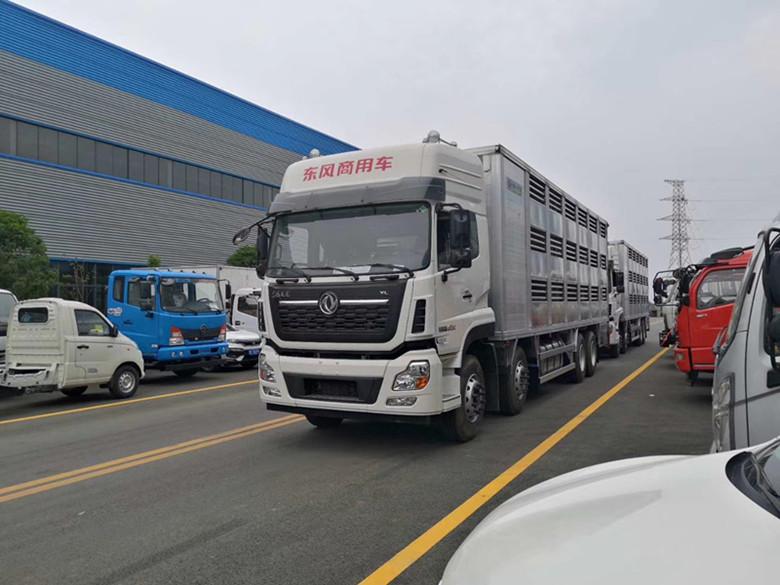 东风天龙铝合金畜禽运输车 前四后八运猪车 可分期付款