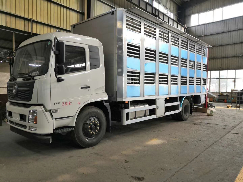 国六东风天锦6米8全铝合金运猪车
