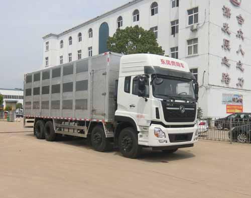 铝合金拉猪车|畜禽运输车多少钱报价|空调运猪车厂家