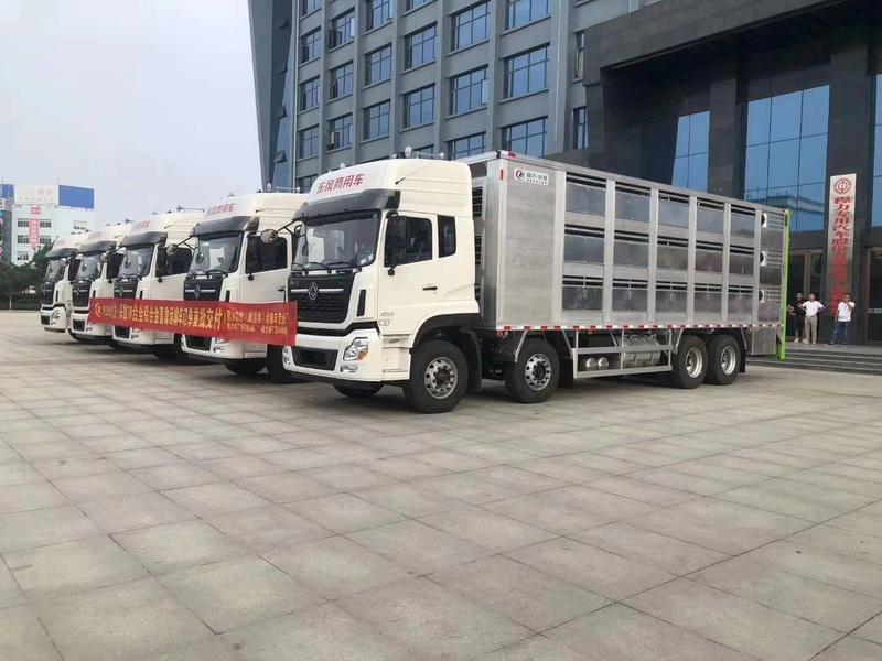 70台东风天龙前四后八全铝合金9米6运猪车批量订单首批发5台
