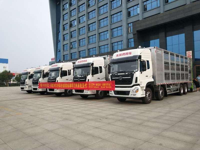 东风天龙前四后八全铝合金畜禽运输车70台订单首批5台交付现场