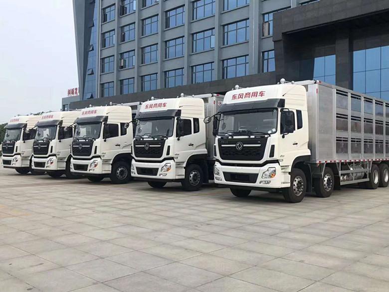 河南省是畜牧业大省,病死畜禽无害化处理任务重-畜禽运输车厂家