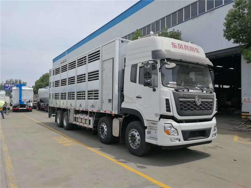 拉猪车|猪苗运输车多少钱|拉猪车报价|拉猪车厂家