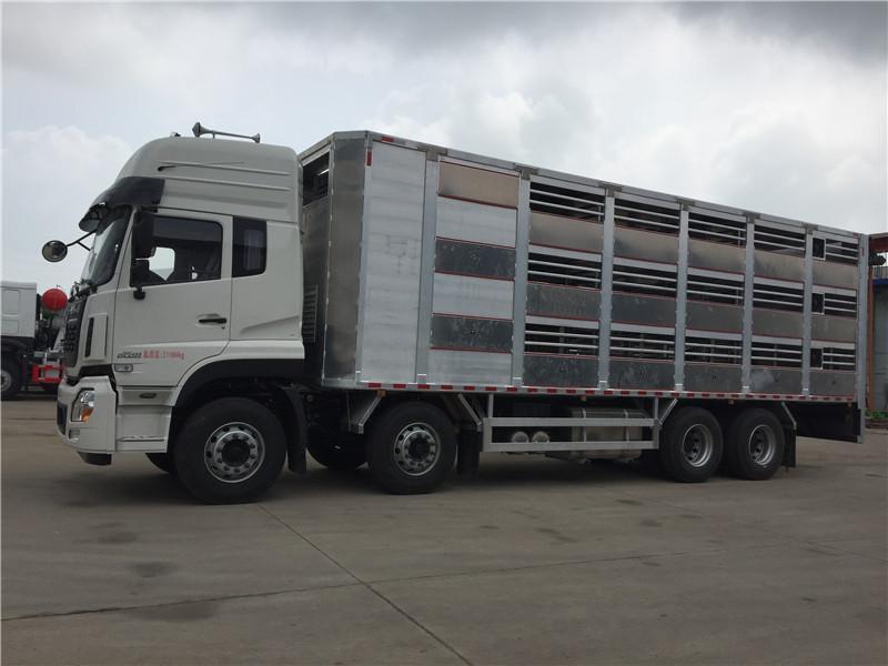 全铝合金打造的高端畜禽运猪专用车视频