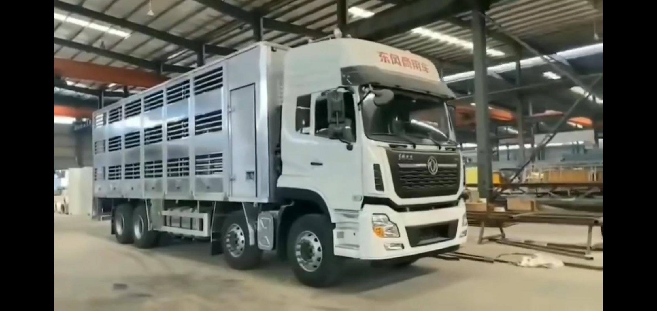 东风天龙前四后八铝合金畜禽运输车视频