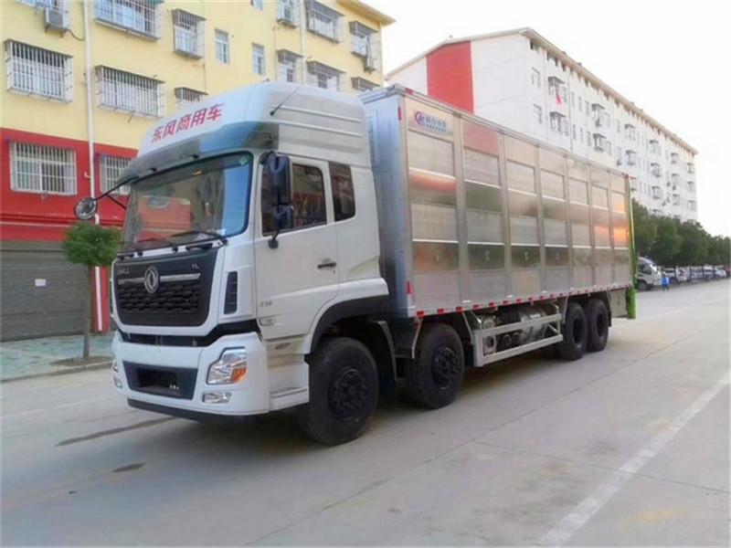 运猪车|猪仔运输车多少钱|运猪车报价