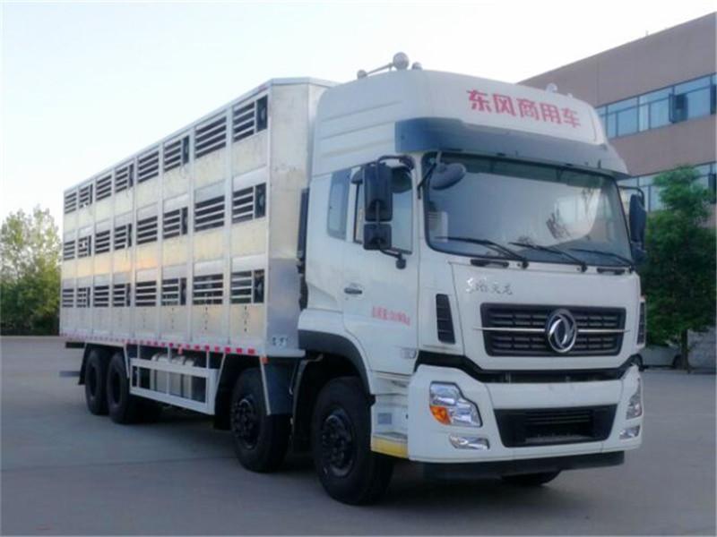 猪仔运输车|猪苗运输车多少钱|猪仔运输车报价