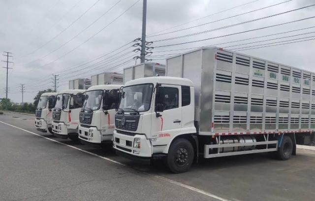 宏宇畜禽拉猪车运输车,专注牧业发展视频