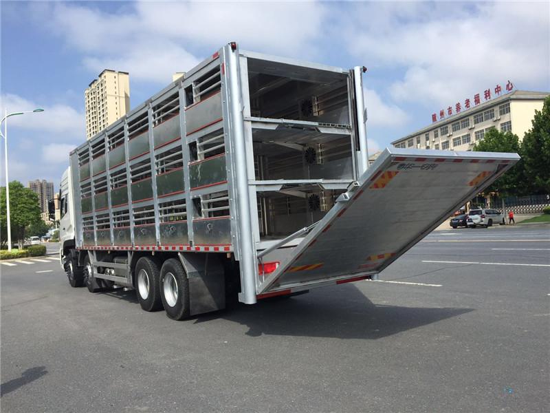 客户说猪坐上恒温空调的专用畜禽运输车咯视频