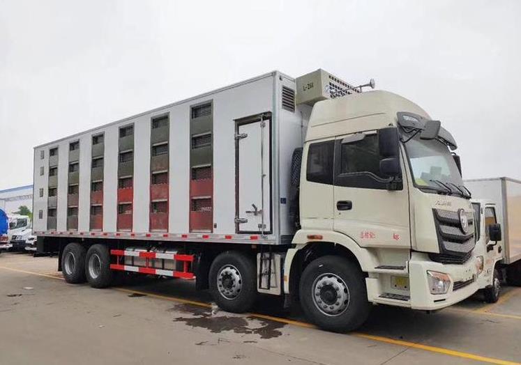 新型保温隔热恒温不锈钢运猪车在哪里买 程力新型不锈钢恒温运猪车物美价廉质量好