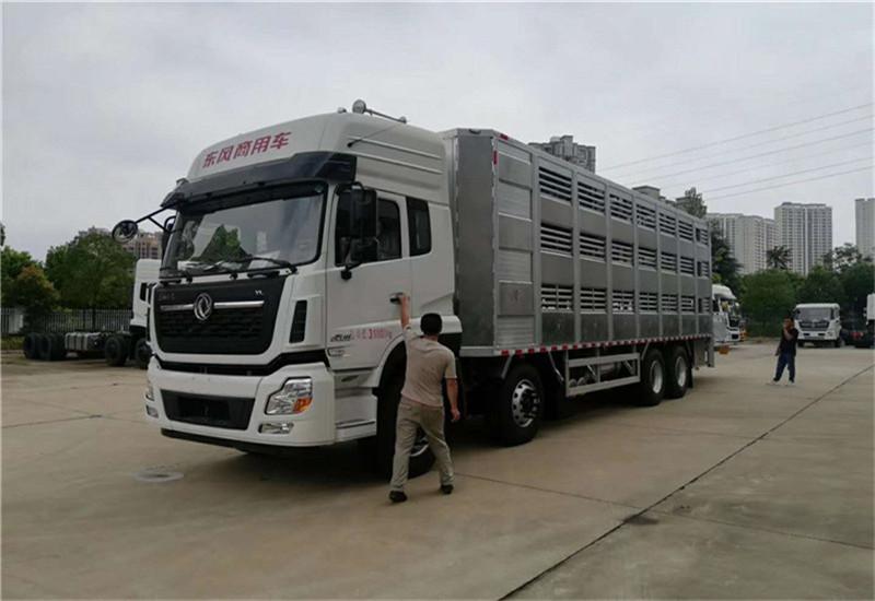 东风天龙畜禽运输车|恒温运猪车|拉猪车厂家报价