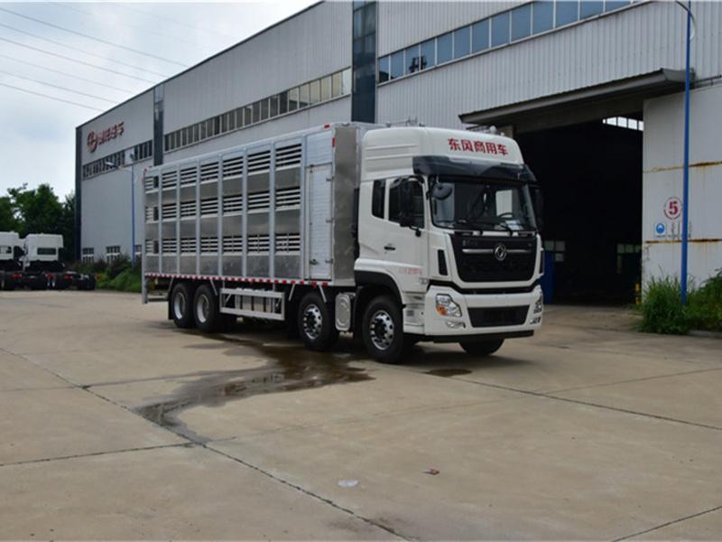 拉猪苗专用车 畜禽运输车厂家报价多少钱