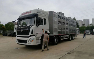 客户定制畜禽运输车、运猪车图片