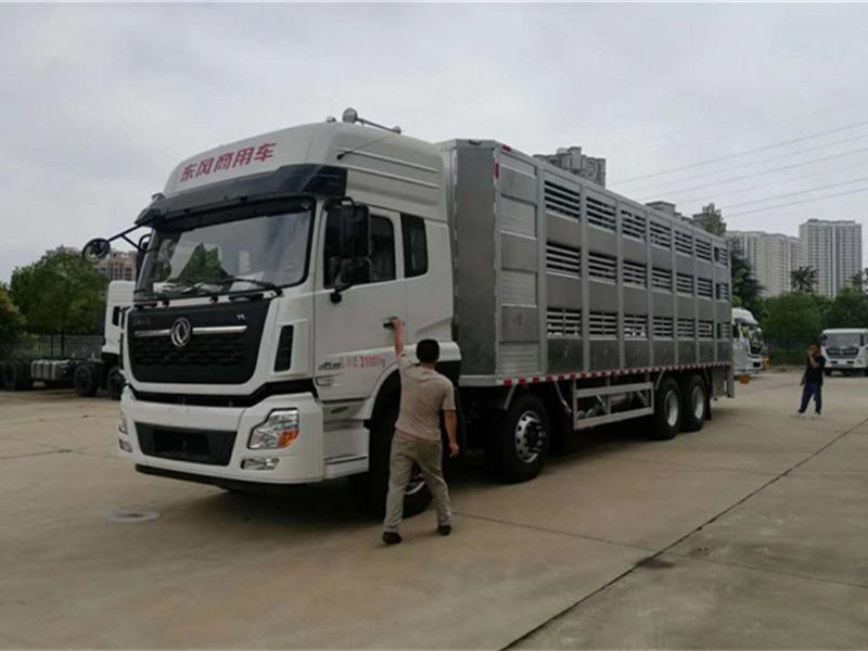 运猪车|运猪车厂家|运猪车配置