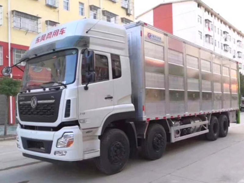 东风天龙全铝合金运猪车厂家