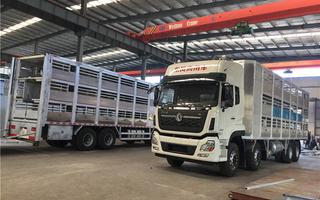 9米6恒溫運豬車廠家提供整車圖片