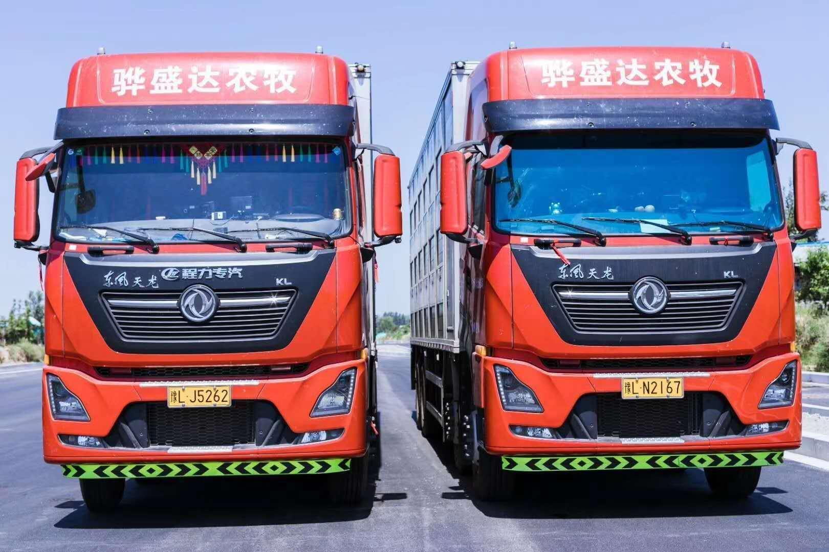 東風天龍9.6米恒溫拉豬車廠家直銷,火熱促銷中。圖片