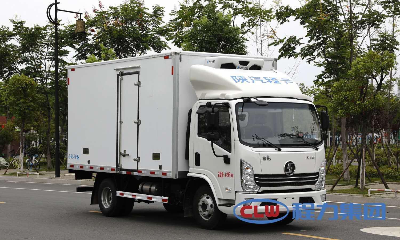 (國六)陜汽輕卡4.2米冷藏車圖片