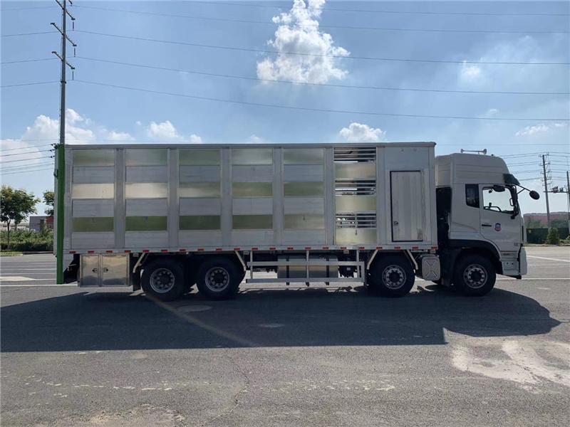 国六全铝合金拉猪车符合新规上户无忧_9米6拉猪车厂家价格