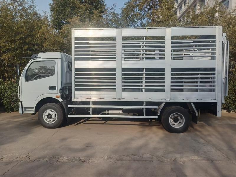 4.2米运猪车,养殖厂区猪仔转运车辆,
