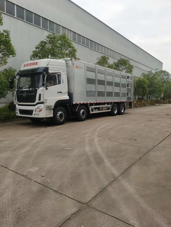 铝合金运猪车供应东风生猪运输车参数图片