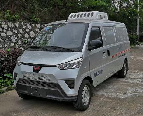 新能源五菱纯电动面包冷藏车