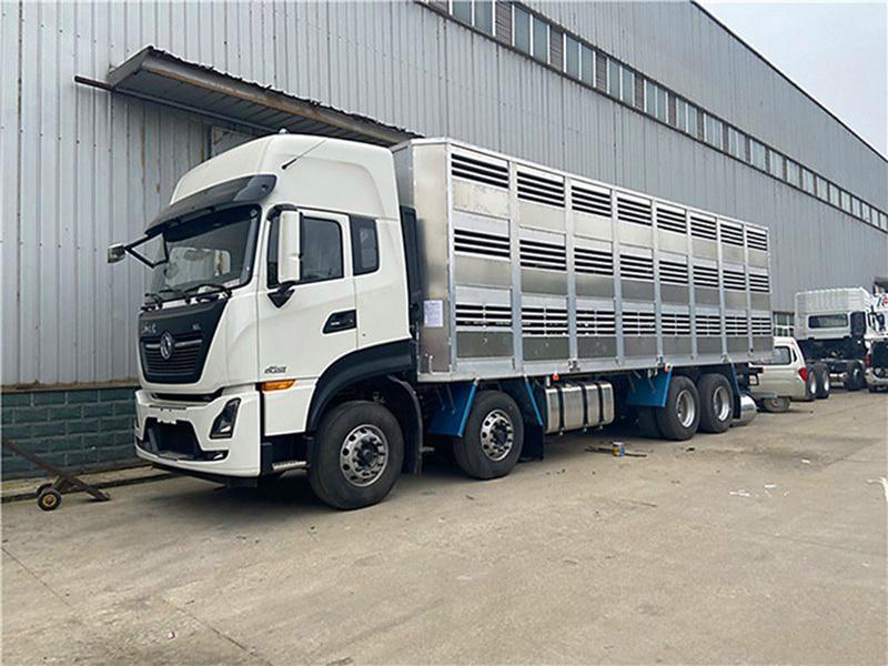 鋁合金恒溫豬苗運輸車生產廠家 廣東恒溫豬苗運輸車多少錢一輛圖片