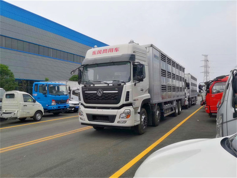 铝合金运猪车 运猪车多少钱 物流公司专用运猪车
