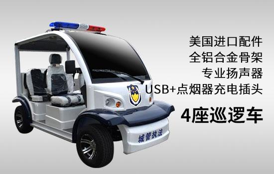 新能源4座巡逻车图片