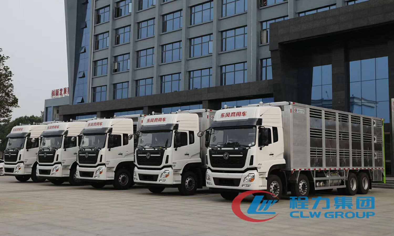 东风天龙9.6米国六拉猪运输车首发图片
