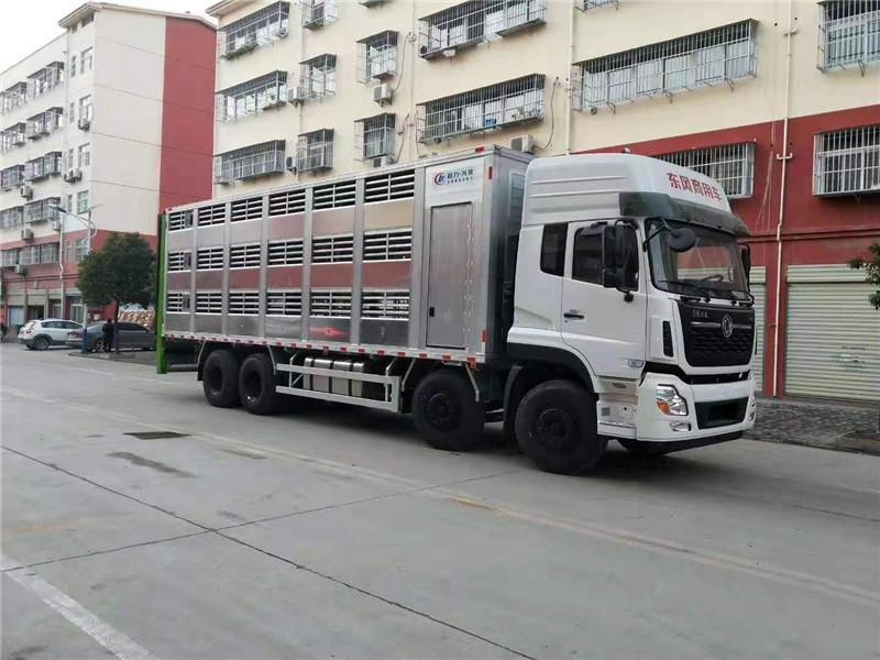 最新款天龙运猪车配备图片