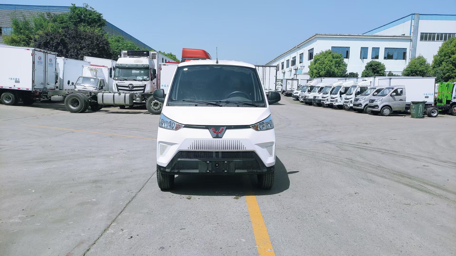 神车上市,五菱新能源EV50冷藏车价格-环保厂家排行第一图片